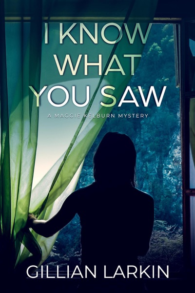 I Know What You Saw by Gillian Larkin Book Summary, Reviews and E-Book Download