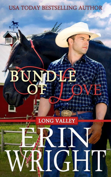 Bundle of Love by Erin Wright Book Summary, Reviews and E-Book Download