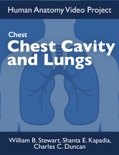 Chest: Chest Cavity and Lungs book summary, reviews and download