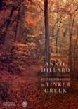 Pellegrinaggio al Tinker Creek book summary, reviews and downlod
