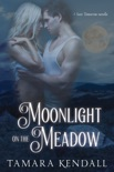 Moonlight on the Meadow book summary, reviews and downlod