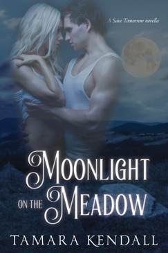 Moonlight on the Meadow E-Book Download