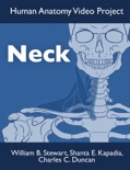Neck book summary, reviews and download