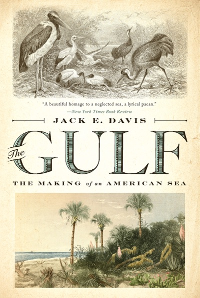 The Gulf: The Making of An American Sea by Jack E. Davis Book Summary, Reviews and E-Book Download