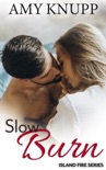 Slow Burn book summary, reviews and downlod