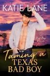 Taming a Texas Bad Boy e-book