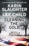Cleaning the Gold book summary, reviews and downlod