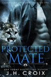 Protected Mate book summary, reviews and downlod