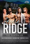 Steele Ridge: The Beginning book summary, reviews and downlod
