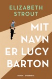 Mit navn er Lucy Barton book summary, reviews and downlod