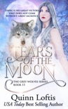 Tears of the Moon book summary, reviews and downlod