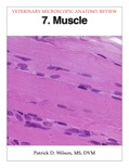 Muscle book summary, reviews and download