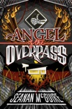 Angel of the Overpass e-book