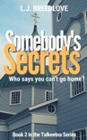 Somebody's Secrets book summary, reviews and downlod