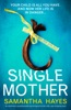Single Mother book image