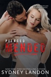 Mended book summary, reviews and downlod
