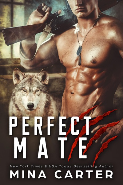 Perfect Mate by Mina Carter Book Summary, Reviews and E-Book Download