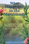 What Happened in the Marshlands book summary, reviews and download
