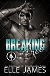 Breaking Free book summary, reviews and download