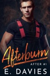 Afterburn book summary, reviews and download