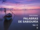 Palabras de Sabiduría Vol. II : Meditación y Positividad resumen del libro