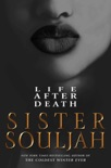 Life After Death book summary, reviews and download
