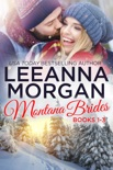 Montana Brides Boxed Set (Books 1-3) book summary, reviews and downlod