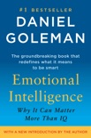 Emotional Intelligence book summary, reviews and download