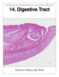Digestive Tract book summary, reviews and download