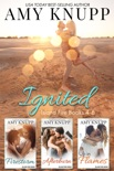 Ignited book summary, reviews and downlod