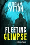 Fleeting Glimpse book summary, reviews and downlod