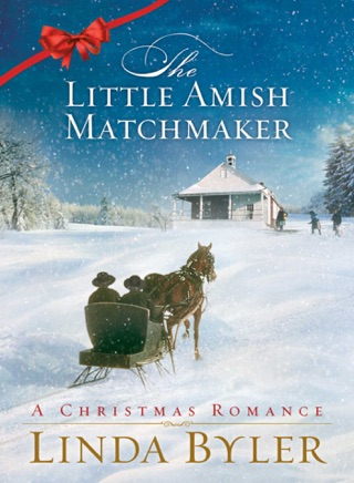Little Amish Matchmaker by SIMON AND SCHUSTER DIGITAL SALES INC  book summary, reviews and downlod