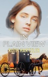 In Plain View: Christian Romantic Suspense Novella book summary, reviews and download