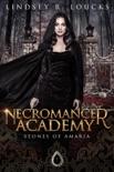 Necromancer Academy e-book