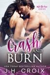 Crash & Burn book summary, reviews and downlod