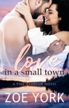 Love in a Small Town book summary, reviews and downlod