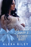Santa's Secret Baby book summary, reviews and downlod