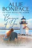 Because of You book summary, reviews and download