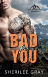 Bad for You (Rocktown Ink #4) book summary, reviews and downlod