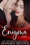 Enigma: The Wedding book summary, reviews and downlod