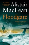 Floodgate book summary, reviews and downlod