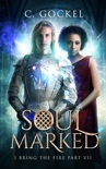 Soul Marked book summary, reviews and downlod