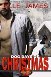 Dog Days of Christmas book summary, reviews and download