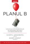 Planul B book summary, reviews and downlod