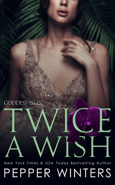 Twice a Wish by Pepper Winters Book Summary, Reviews and E-Book Download