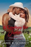 A Cowboy for June book summary, reviews and downlod