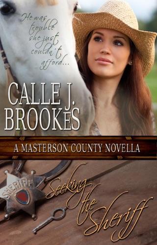Seeking the Sheriff by Draft2Digital, LLC book summary, reviews and downlod