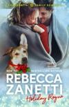 Holiday Rogue book summary, reviews and downlod