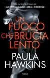 Un fuoco che brucia lento book summary, reviews and downlod