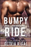 Bumpy Ride book summary, reviews and downlod